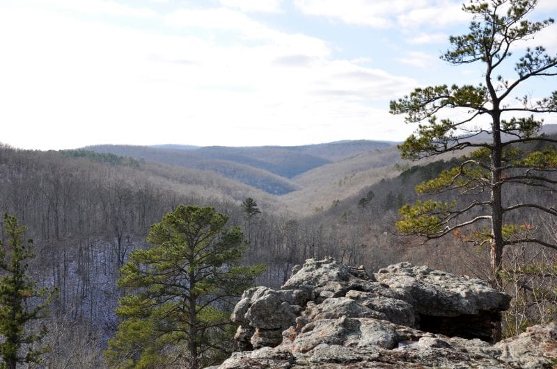 View from King's Bluff Trail looking West