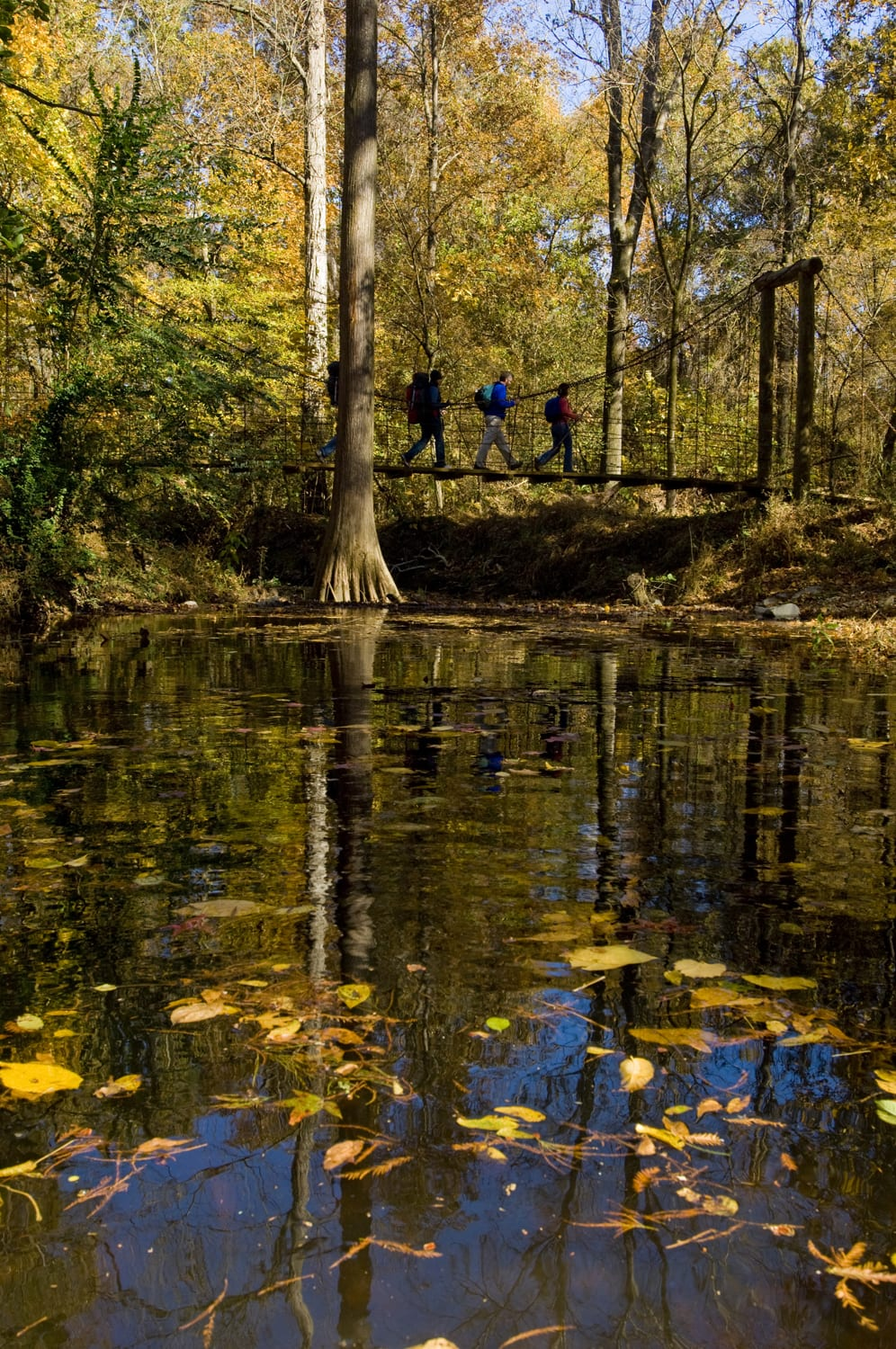 Hiking the Cane Creek Lake Trail, Cane Creek State Park. (photo courtesy of Arkansas Department of Parks & Tourism)