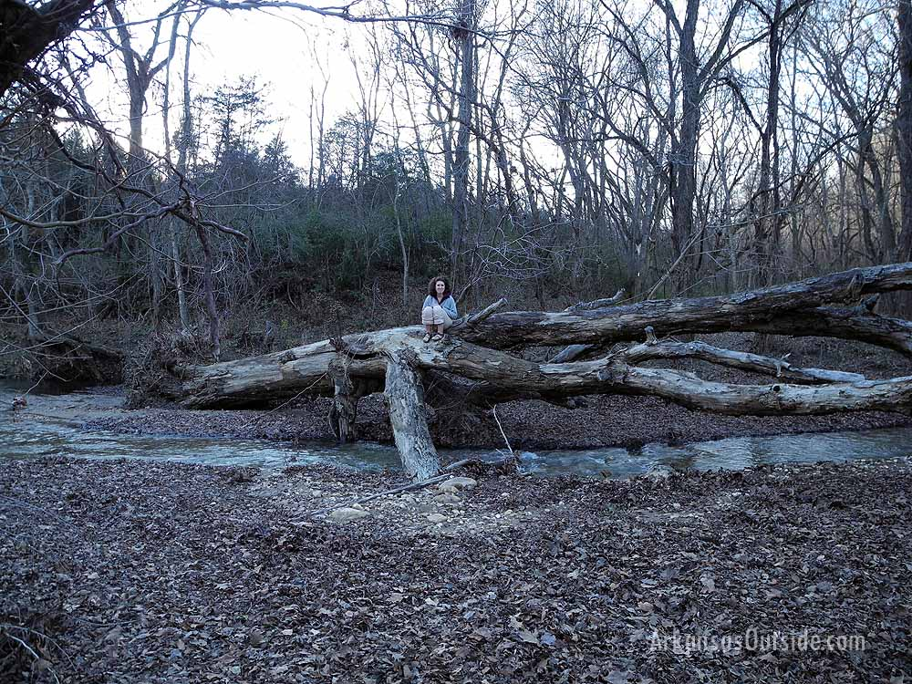 McKenna found a downed tree to perch on and watch the river flow by.