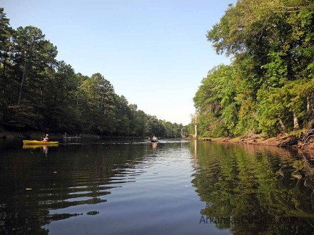Heading back downstream.