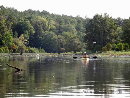 Chasing birds around the lake.