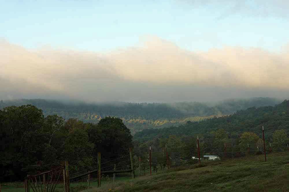 Good morning at Hazel Valley Ranch.