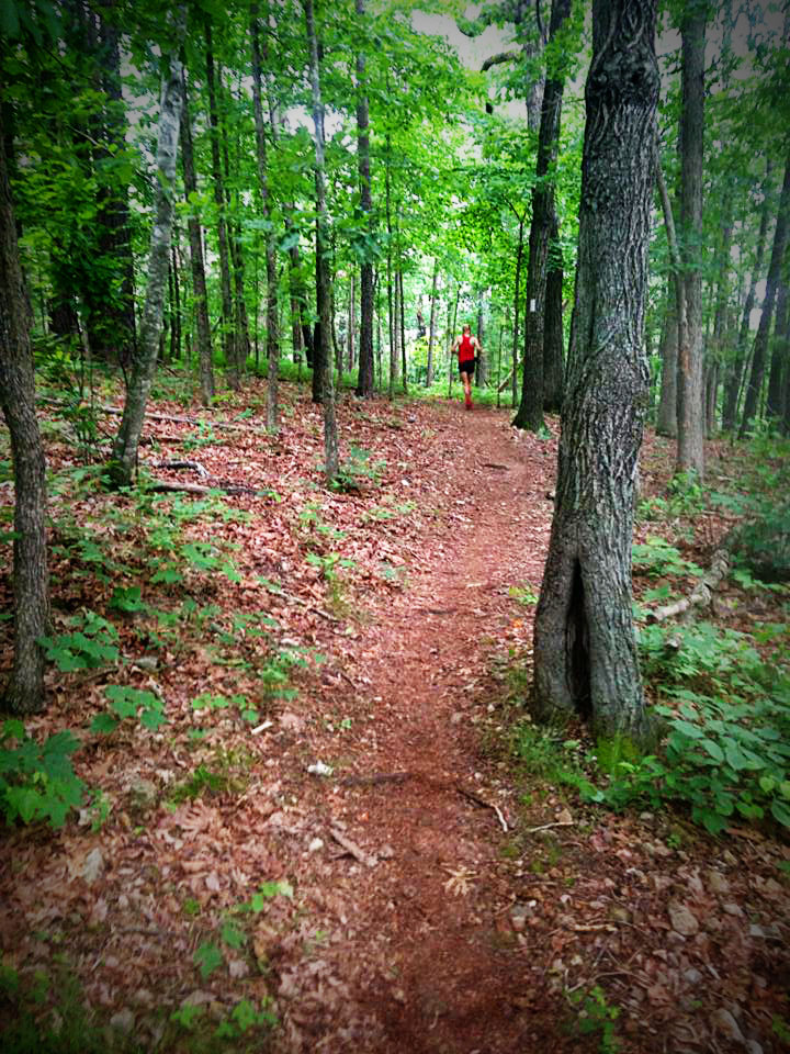 Some of the beautiful trail at Hobbs State Park (Photo courtesy of Cassandra Ticer)