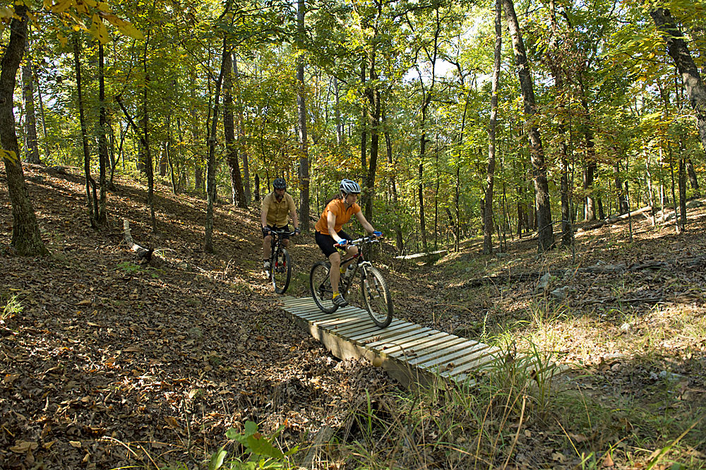 Recent photo from the Jackfork Mountain Bike Trail (Arkansas Department of Parks and Tourism)