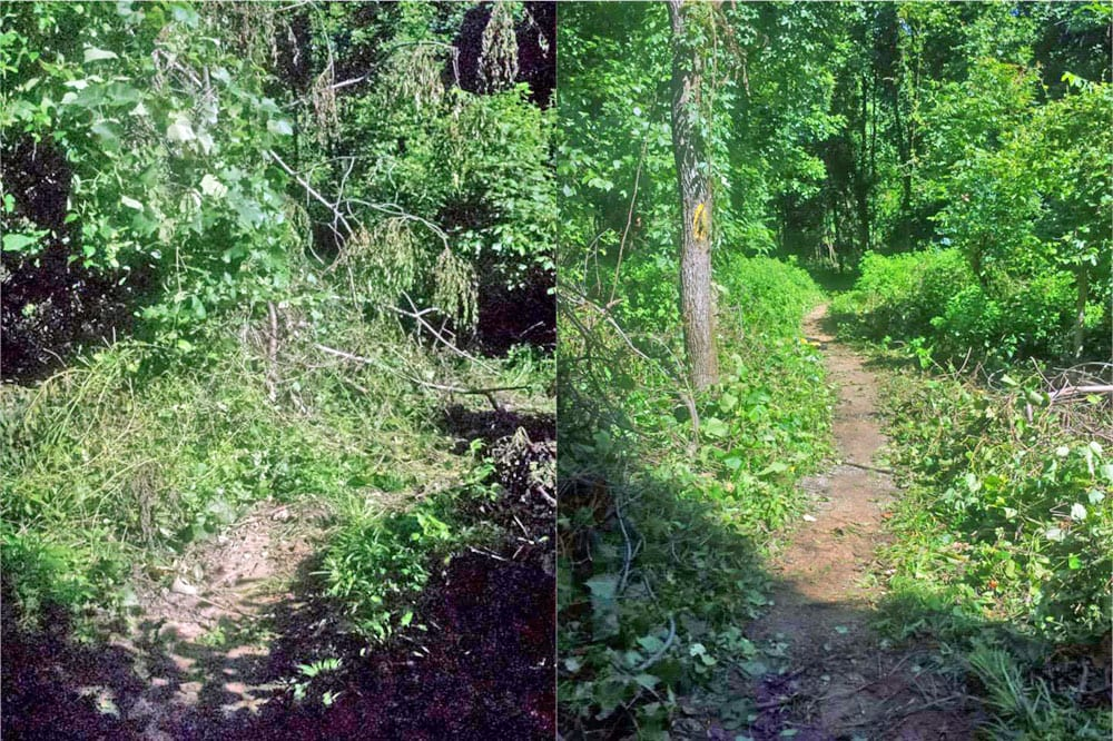 Before and After shot at Pfeifer Loop.
