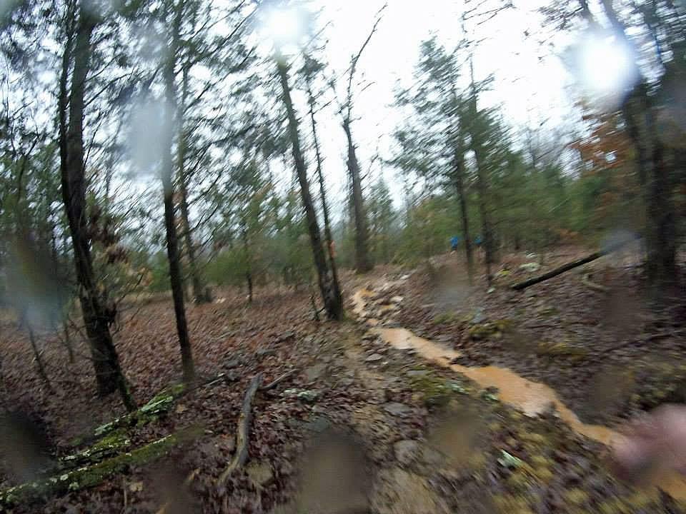 Creek/Trail coinciding