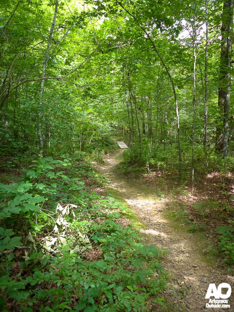 Who wouldn't want to ride, run or hike down this trail?