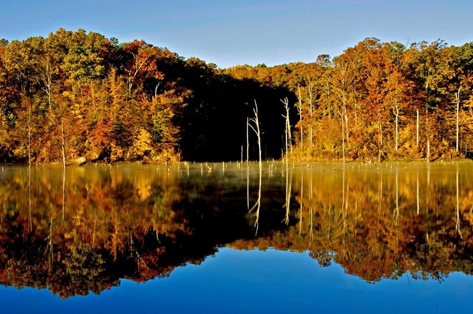 Village Creek State Park (photo courtesy of Arkansas Parks and Tourism)