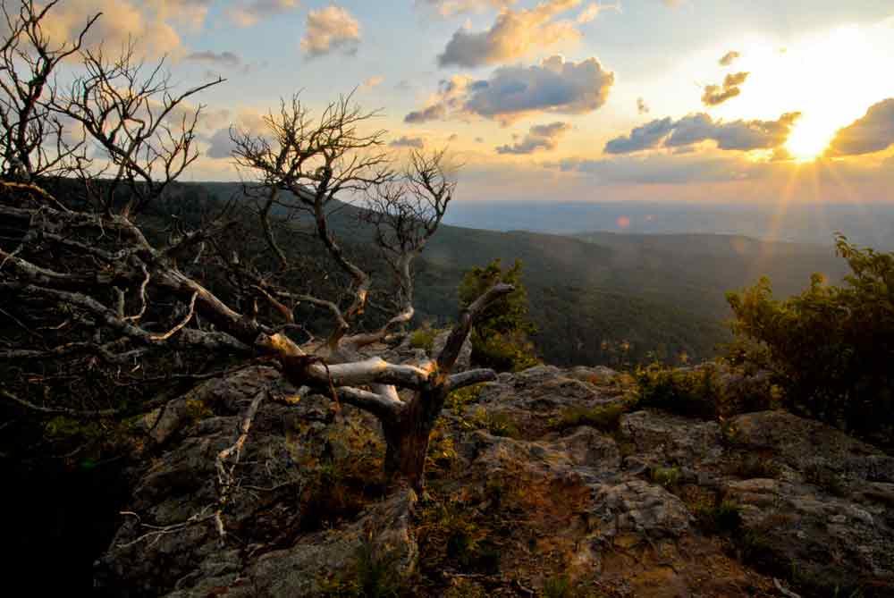 Mount Magazine Trail Run