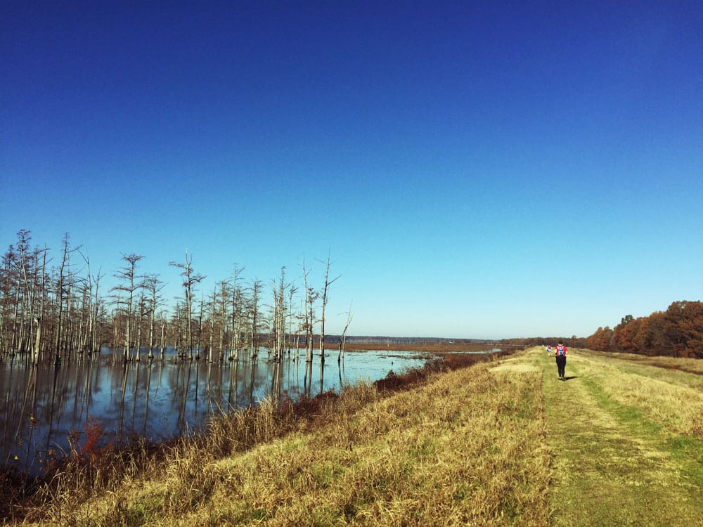 The long levee