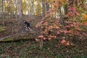 Northwestern Arkansas' Mountain Biking Momentum | Dirt Rag