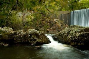 110 Years of the Ouachita National Forest