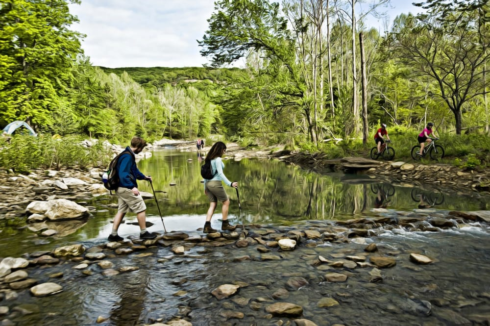 Lee Creek at Devil's Den State Park (Photo courtesy of Arkansas Department of Parks and Tourism)