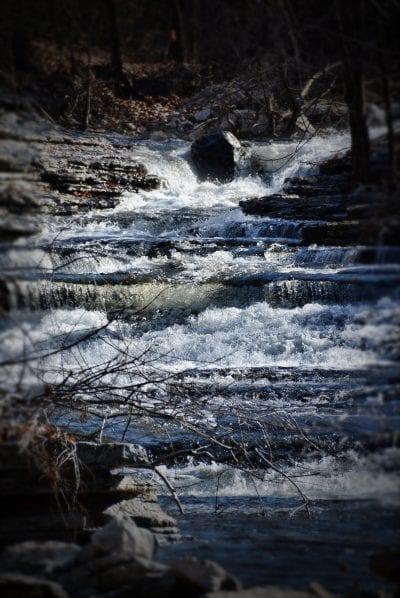 Tanyard Creek - The Trailhouse - Northwest Arkansas